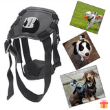 Dog Harness With GoPro Accessories