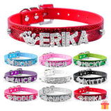 Pet Collar With Personalized Diamond Name