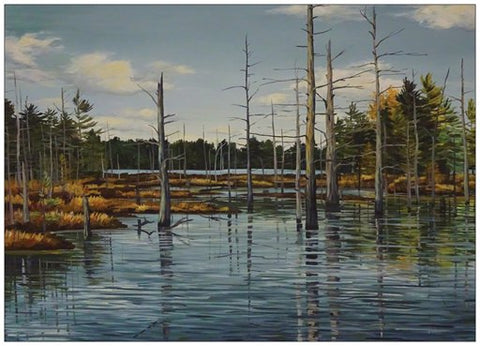 Near Cranberry Lake Painting Postcard