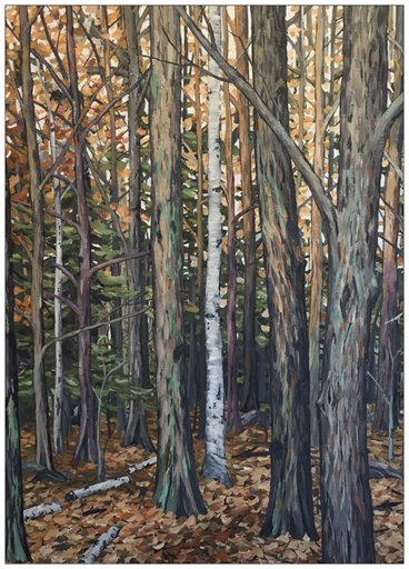 The Forest Calm Painting Postcard