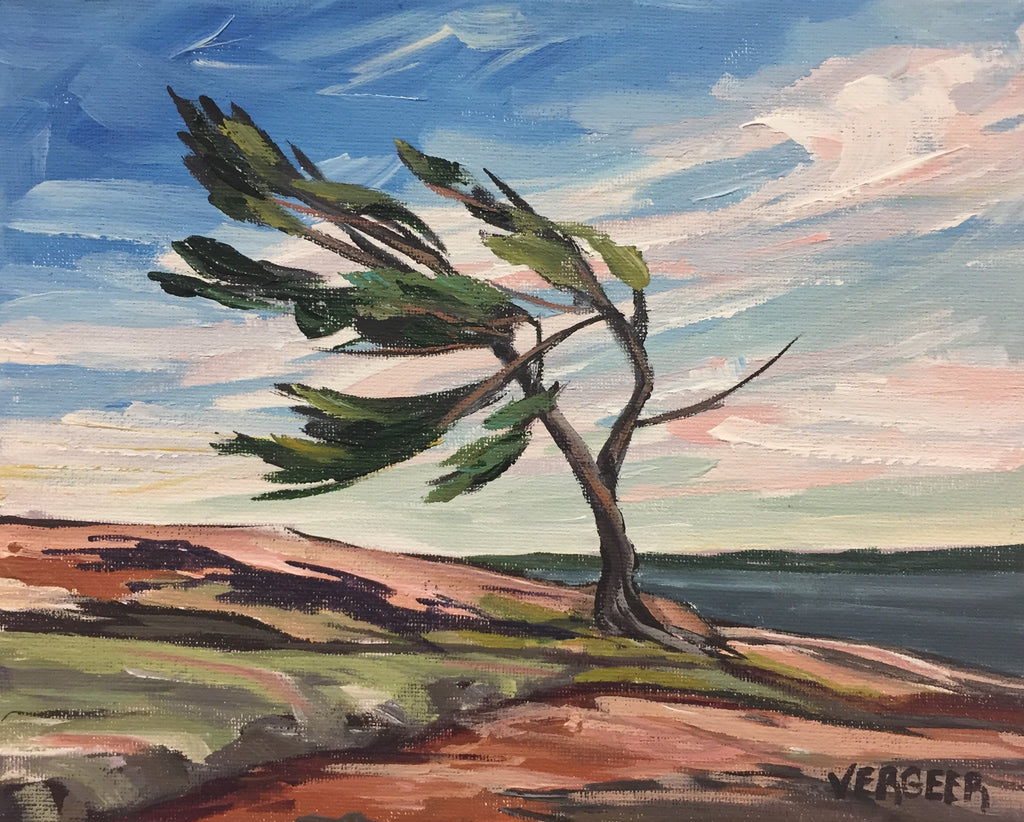 Windswept, Rocks and Sky Painting Class, Tuesday July 30, 10am - Noon