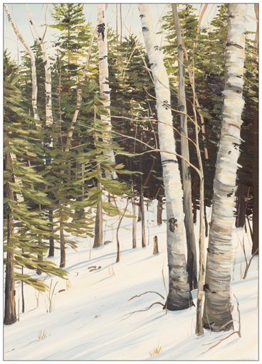 Winter Birches Painting Postcard