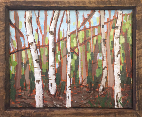 White Birches 8x10 Framed Painting