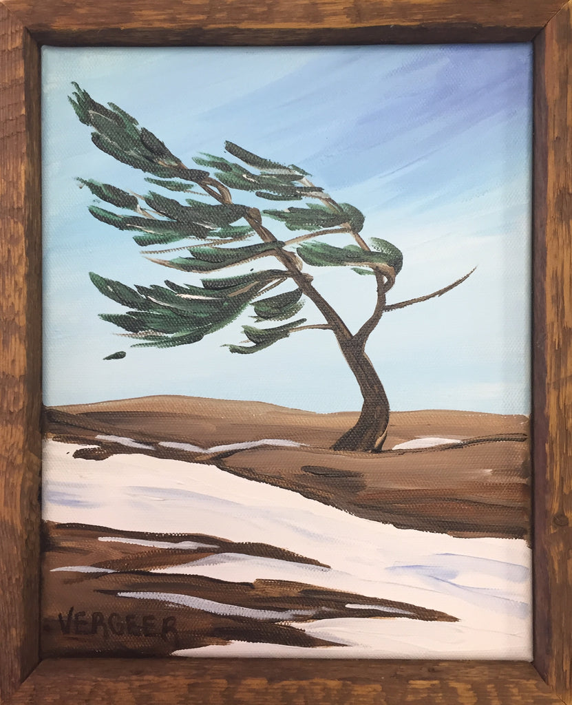 Winter Killbear Provincial Park Windswept Pine 8x10 Framed Painting