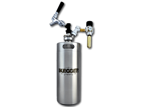 homebrew kegging system with co2 tap