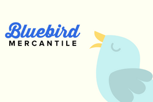 Bluebird Mercantile Home Decor, Vintage Finds , Iron Orchid Design, Dixie Belle Paint