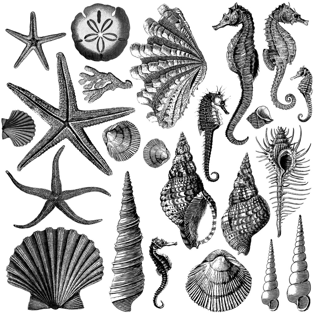 Iron Orchid Designs Seashore Stamp 12 x 12 2 sheets