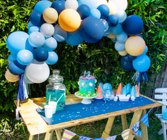 Bluey Picnic Party