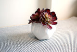 White Geometric Small Pots Set of 2