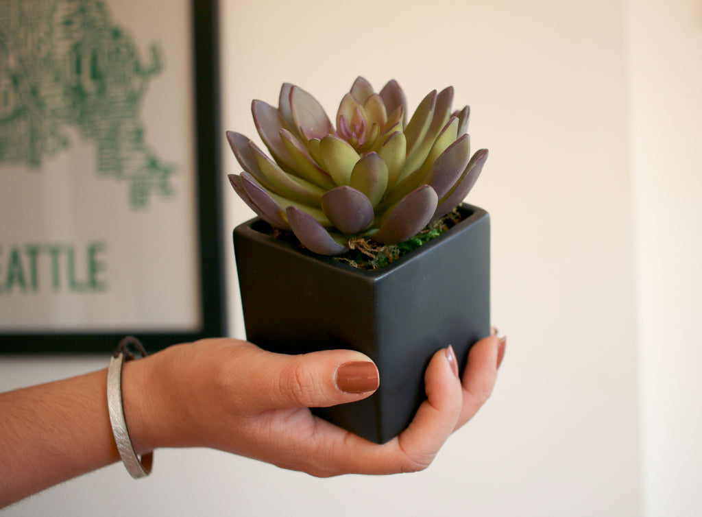 Purple and Green Artificial Potted Echeverria Succulent in Black Matte Vase