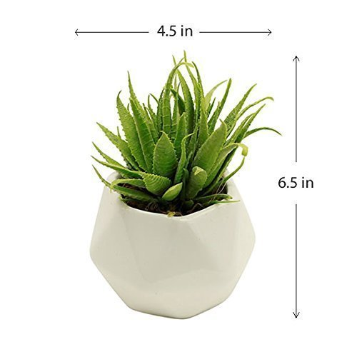Small Faux Aloe Succulent Plant in Geometric White Ceramic Vase - Potted Plant Artificial Succulent Decor