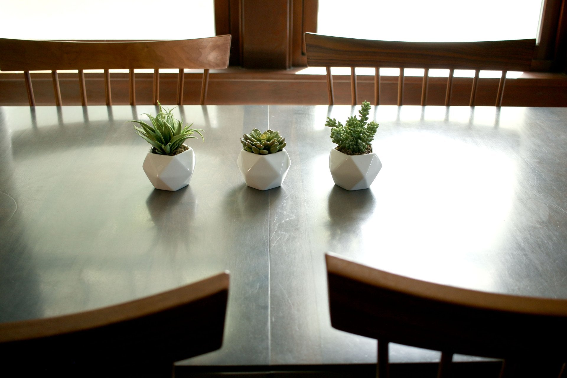 Beautiful Potted Plants, Vases, and Accents for Home and Business ...