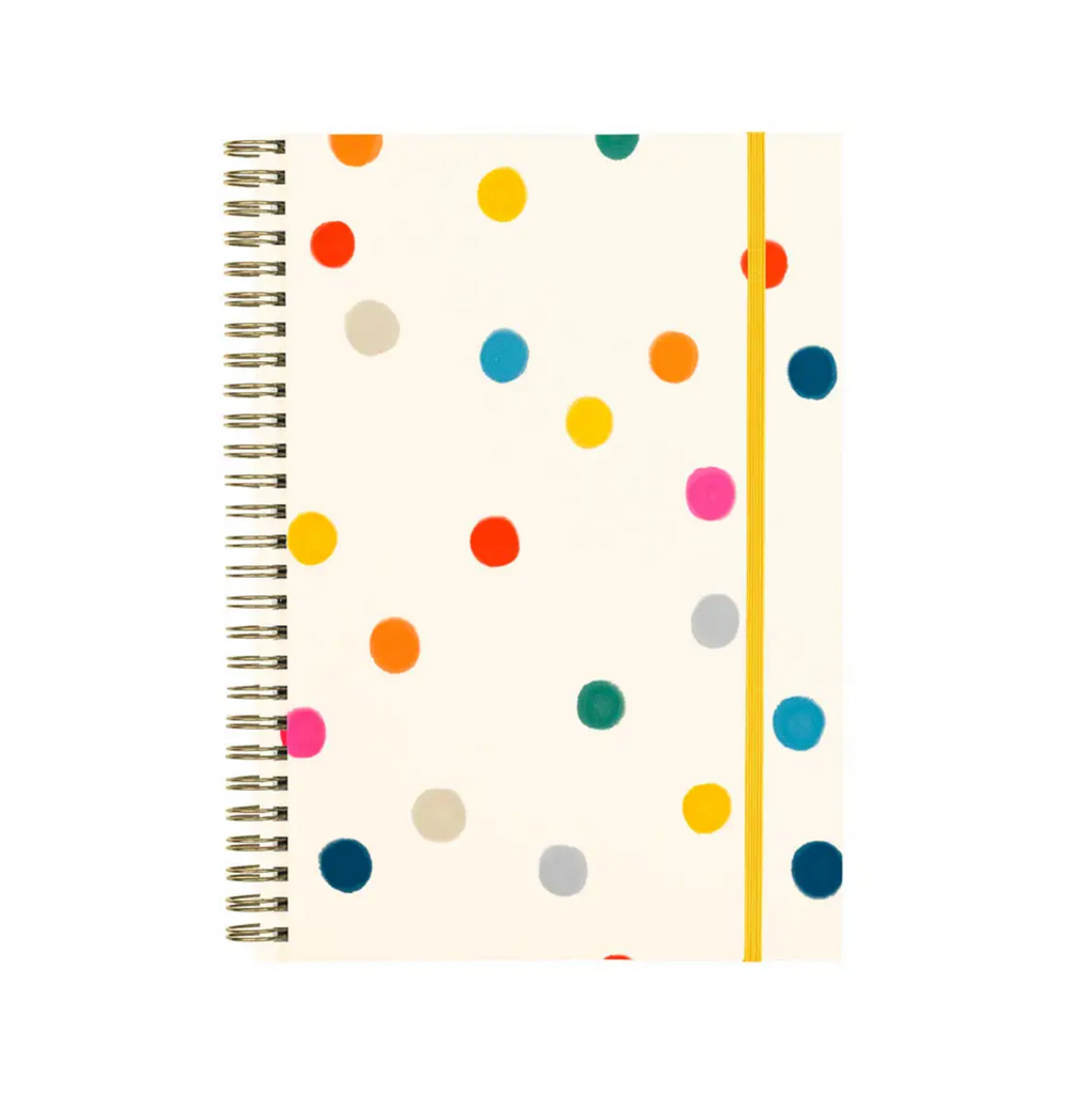 Ball Pit Agenda Notebook