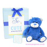 Baby Shower idea gifts for boys teddy bear