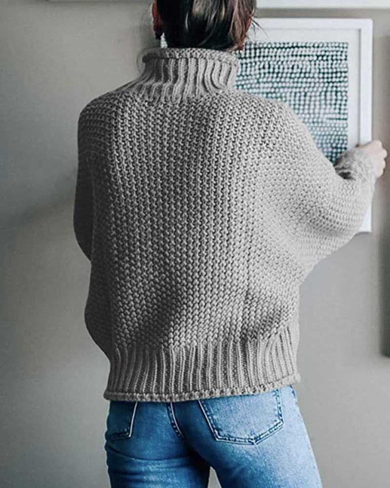 Chunky Knit High Turtleneck Sweater