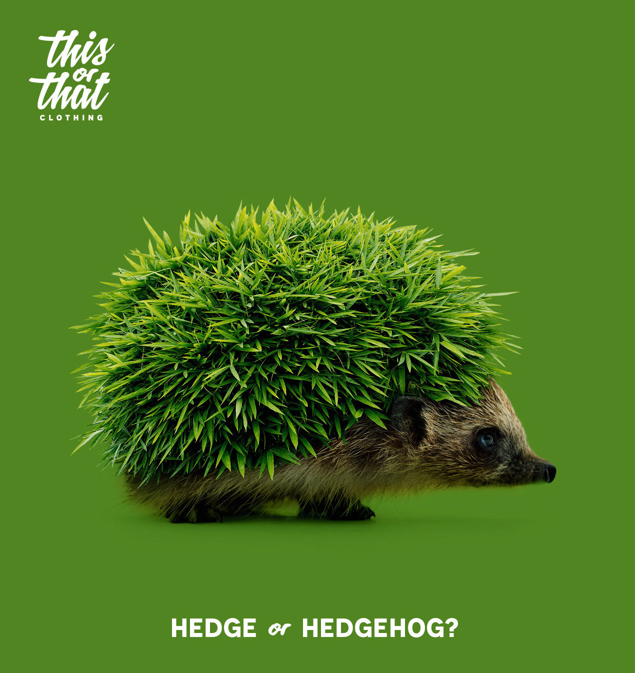 Hedge or Hedgehog? unisex t-shirt