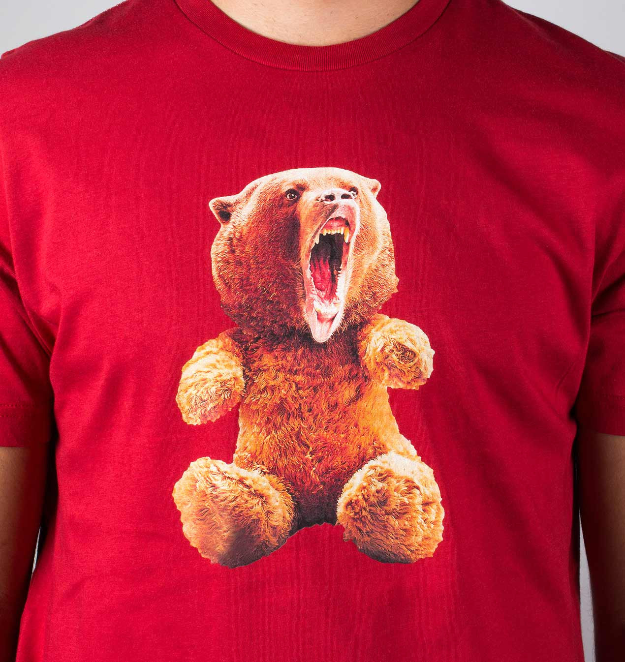 Teddy Bear or Grizzly Bear? unisex t-shirt