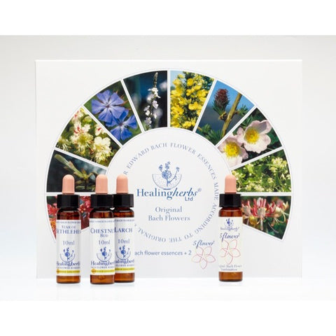 10ml remedy set (Expires on 2029)