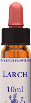 Larch 10ml