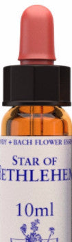 Star of bethlehem 10ml