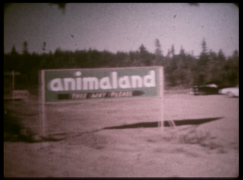 Sussex NB Animaland 1960s