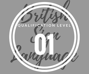 30 weeks - LEVEL 1 British Sign Language Course