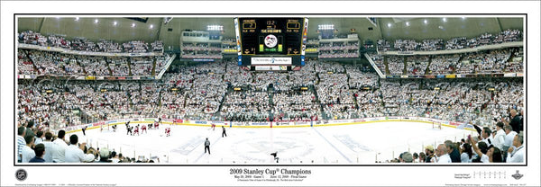 PA-257 Penguins 2009 Stanley Cup Champions