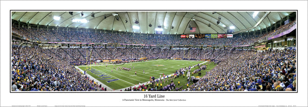 MN-270 Vikings 16 Yard Line