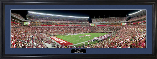 AL-283 Alabama - 20 Yard Line