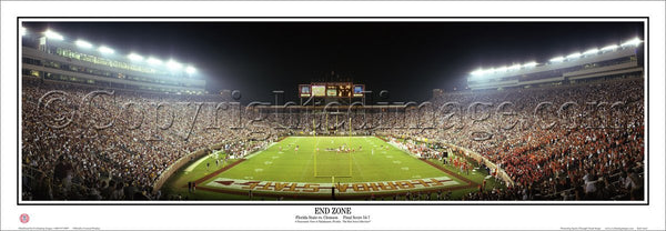 "FL-125 Florida State Seminoles ""End Zone"""