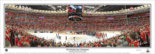 IL-383 Chicago Blackhawks 2015 Stanley Cup Celebration