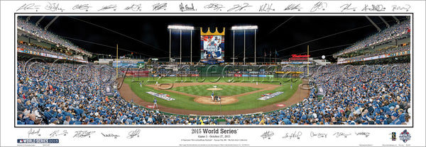 MO-391A 2015 World Series with signatures