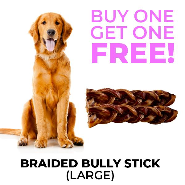 Chew Me - Oven Dried Braided Bully Stick (Large) BOGO