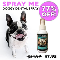 77% off SPRAY ME - All Natural And Effective Dental Spray for Dog Breath*