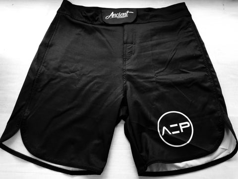 AEP Hybrid Fight Shorts