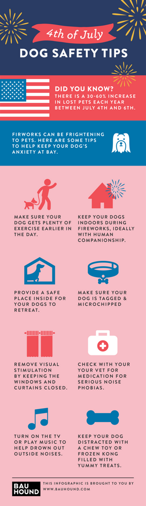 Infographic: 8 Dog Safety Tips for 4th of July
