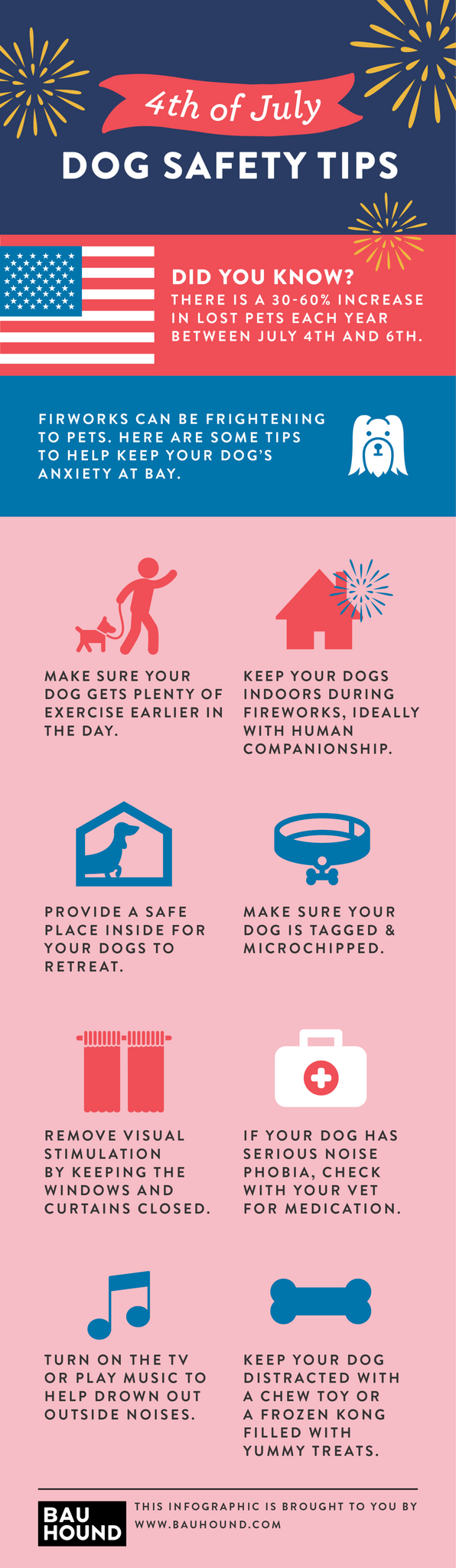 dogs and fireworks safety tips infographic