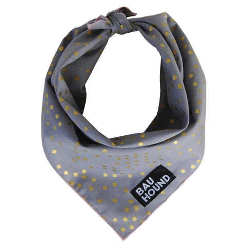Starry Starry Dog Bandana
