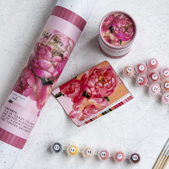 Petal Power Paint by Numbers Kit