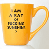 Ray of F'ing Sunshine Mug