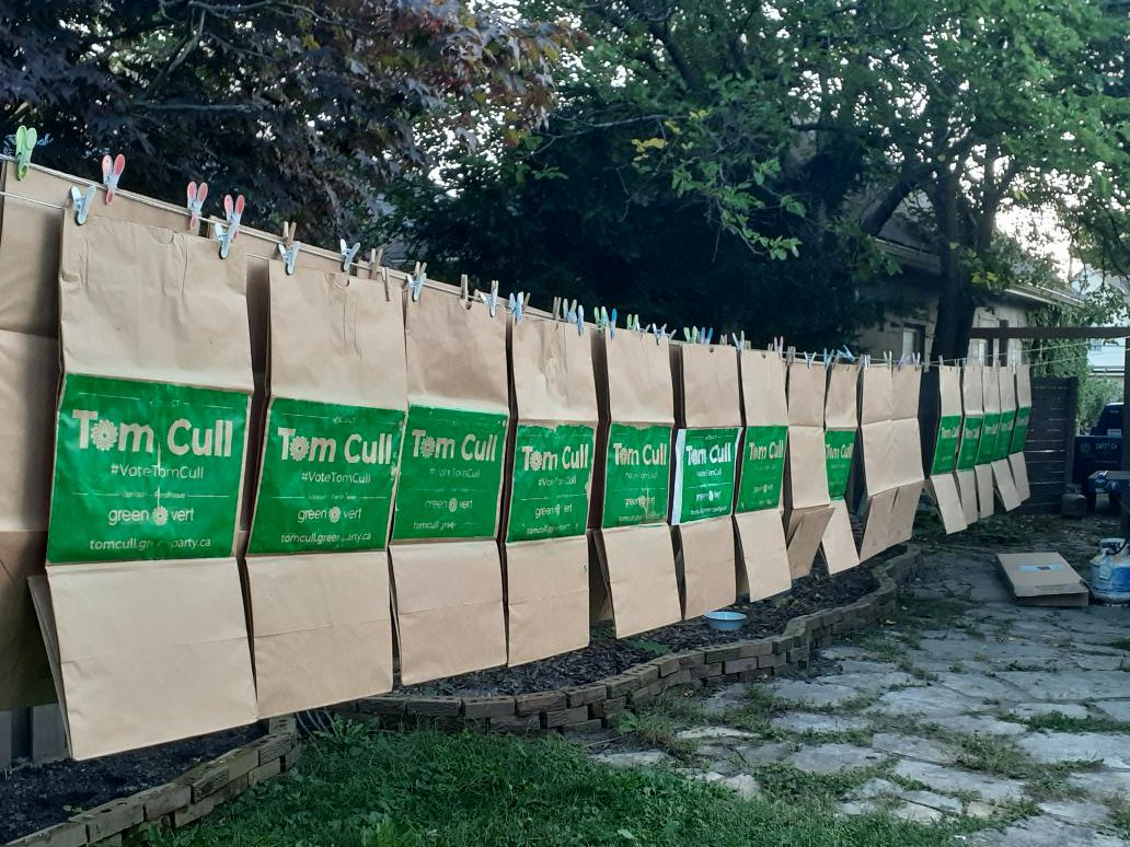 ♻️ Green Shoutout: Tom Cull's Genius Eco-Friendly Political Election Signs!