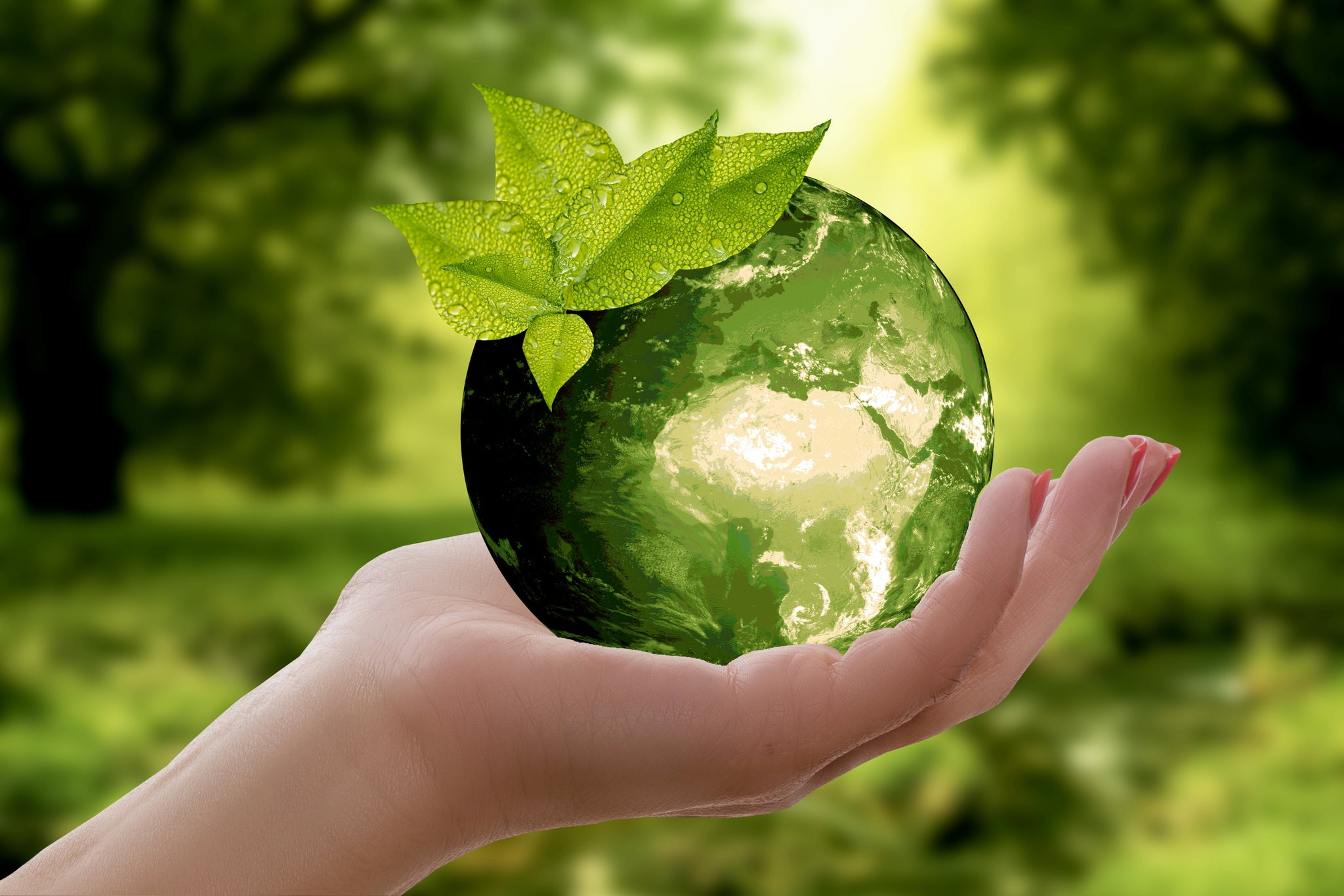 5 Easy Ways to Go Green!