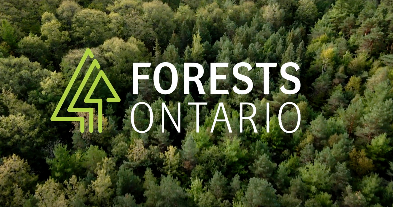 Forests Ontario 50 Million Tree Project