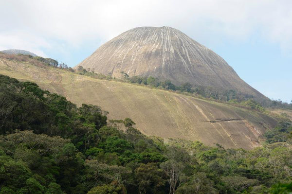 mount namuli protected land Mozambique Africa