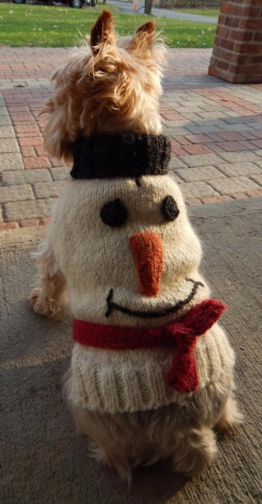 Holiday Dog Sweater Snowman