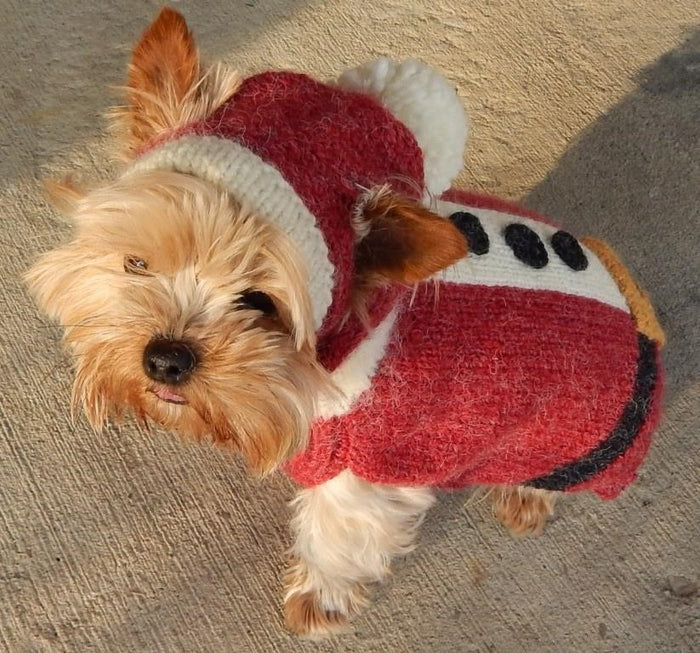Holiday Dog Sweater Santa