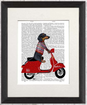Real Book Page, Dachshund On Moped