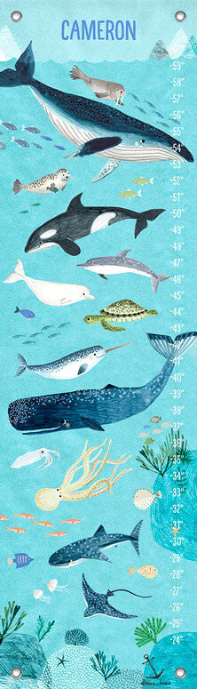 Ocean Waters Growth Chart