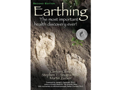 Boek english - Earthing (320 p., Clinton Ober, S. Stephen, M. Zucker) - Aarding