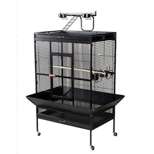 Black Select Wrought Iron Play Top Parrot Cage